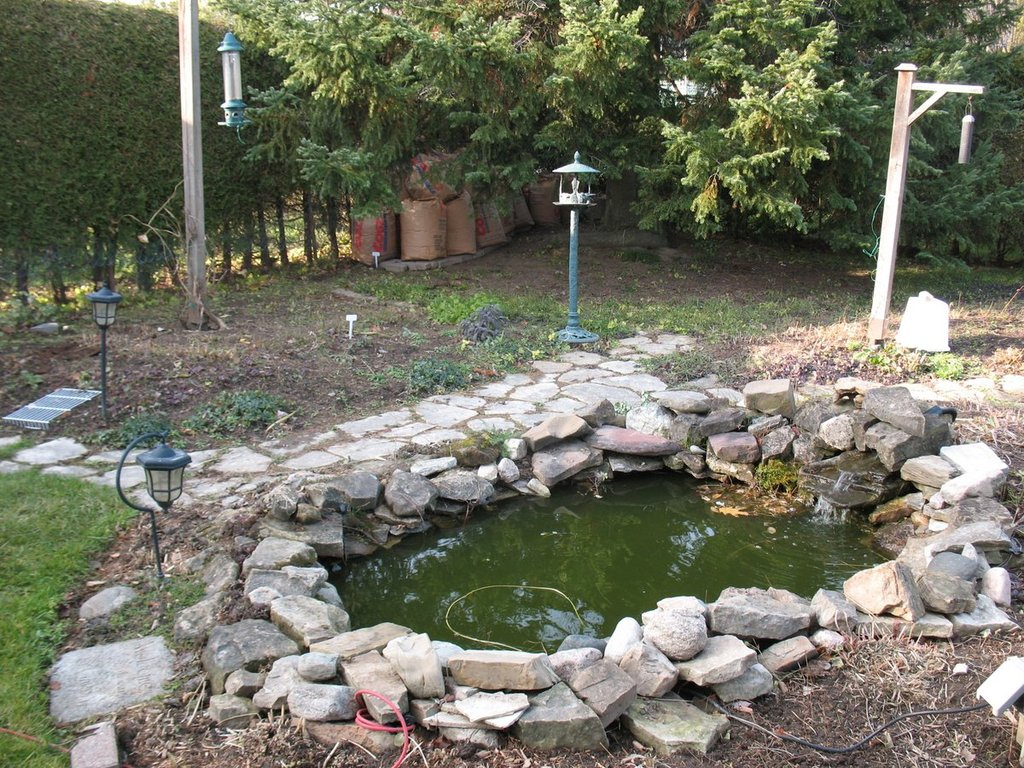 Topics tagged under 2 on Square Foot Gardening Forum - Page 3 IMG_3165_zps80tfweou
