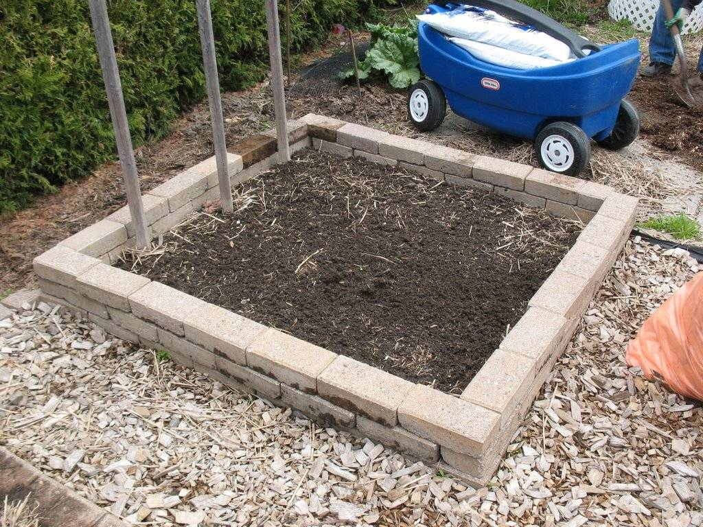 Topics tagged under 2 on Square Foot Gardening Forum - Page 2 IMG_3709_zpsmcmhfxaf