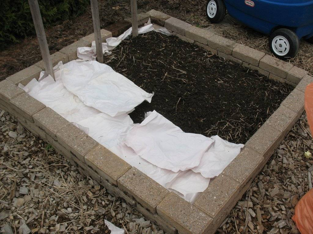 Topics tagged under 2 on Square Foot Gardening Forum - Page 2 IMG_3711_zpsobisiiof