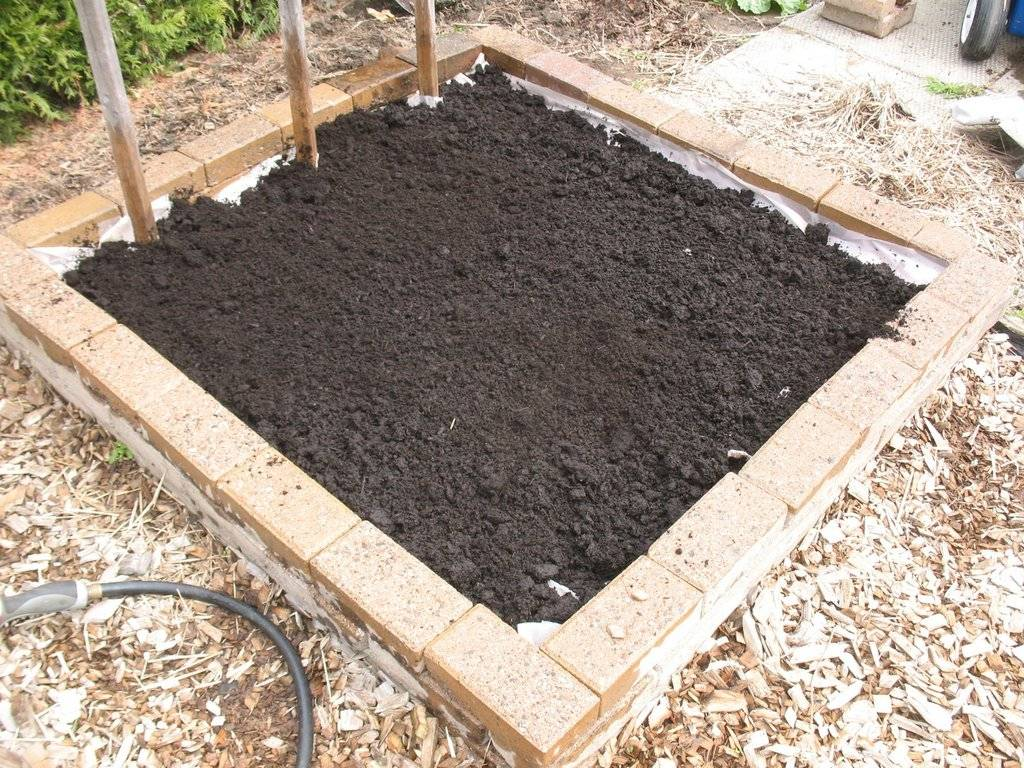 Topics tagged under 2 on Square Foot Gardening Forum - Page 2 IMG_3714_zpsyakjt4bs