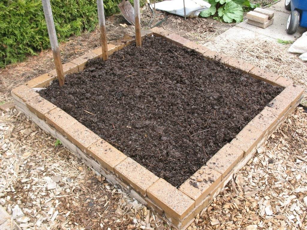 Topics tagged under 2 on Square Foot Gardening Forum - Page 2 IMG_3717_zpswhykxogf