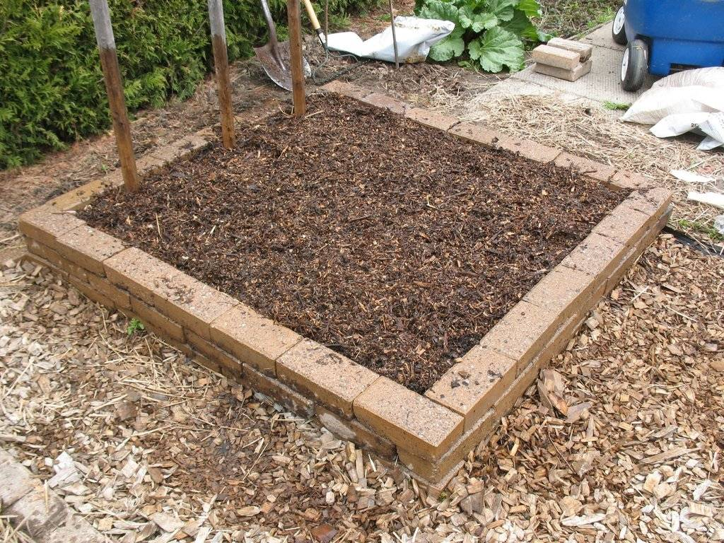 Topics tagged under 2 on Square Foot Gardening Forum - Page 2 IMG_3720_zpsuixam5a6