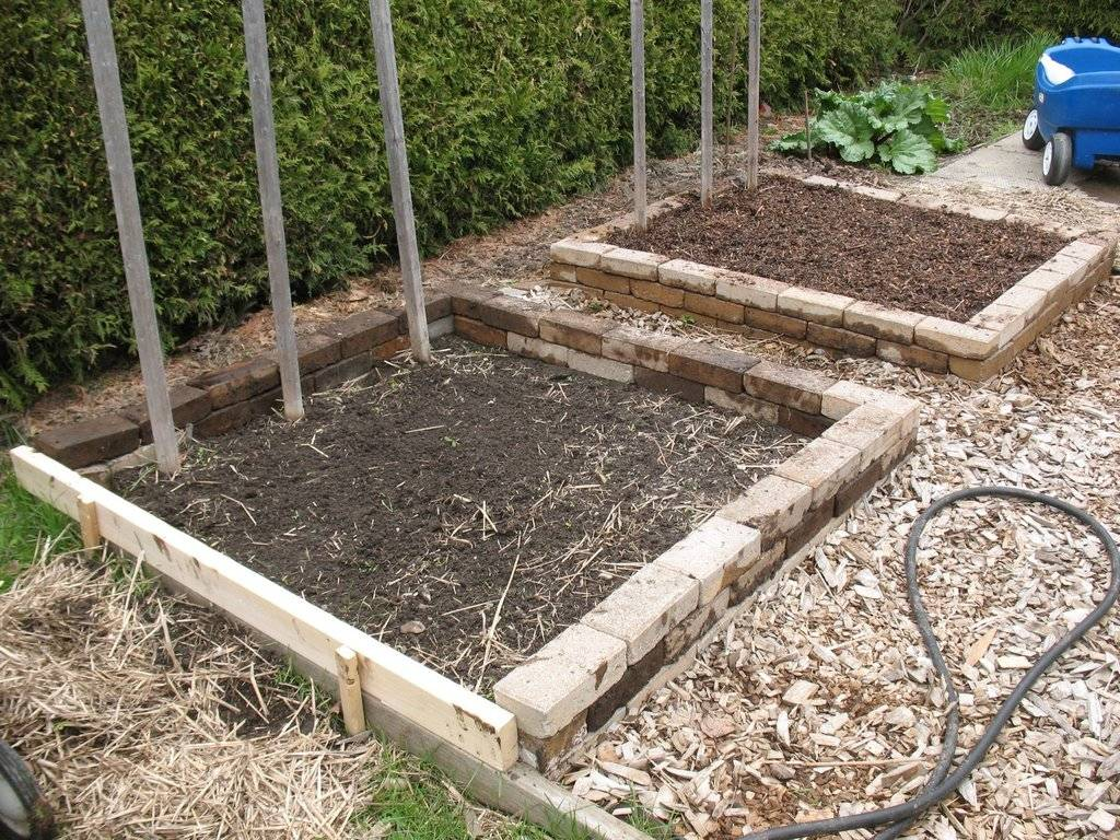 Topics tagged under 2 on Square Foot Gardening Forum - Page 2 IMG_3723_zpsgyxeeeiv