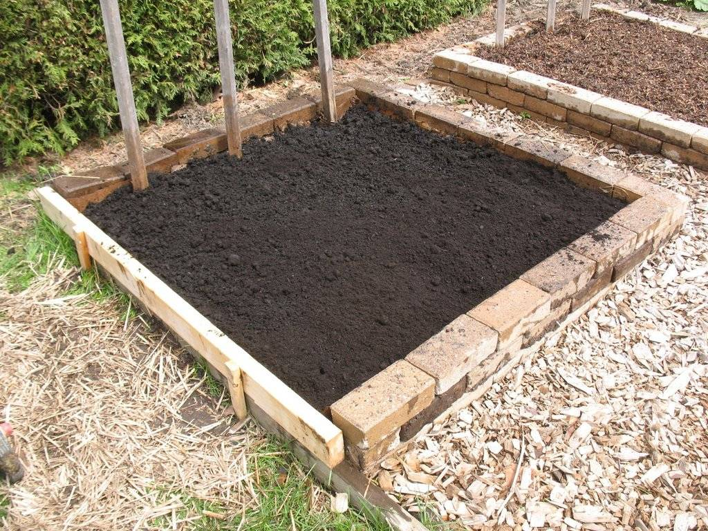 Topics tagged under 2 on Square Foot Gardening Forum - Page 2 IMG_3725_zps6ocrwsd6