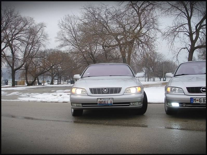 Cadillac Catera Owners MEET Chicago FEB 20th PICTURES DSC05232-1