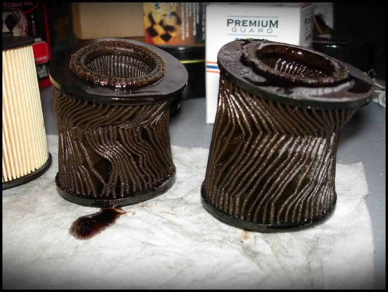 WARNING: Do not use Premium Guard Oil Filters: DSC04754