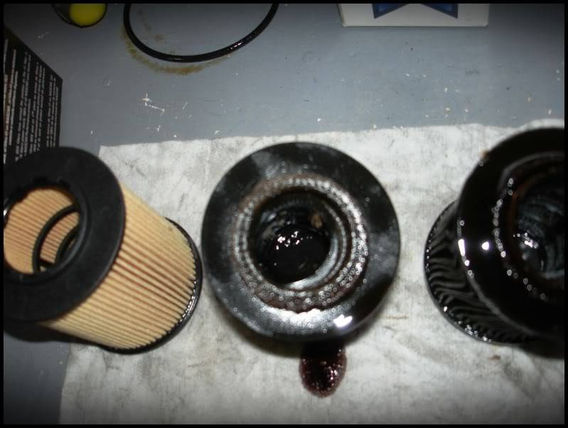 WARNING: Do not use Premium Guard Oil Filters: DSC04755