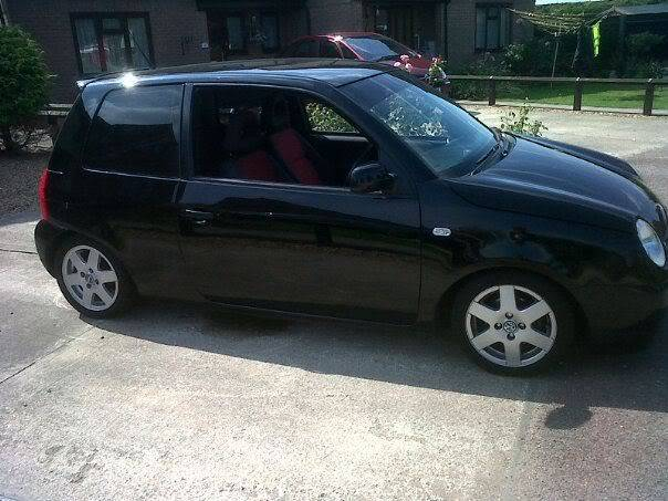New member from Wicken - Black Lupo 321648_10150354024326278_612741277_10062731_4828160_n