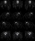 [VX] Charas de Kazzador / Terra-chan / Vibrato SpiderSpriteB2