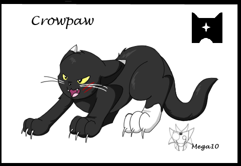 Mega10's Box Gallery of whatever she wants Crowpaw