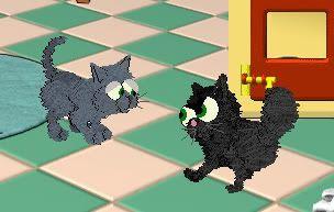 Kitty cats! Minireject