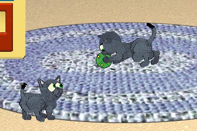 Kitty cats! Sss
