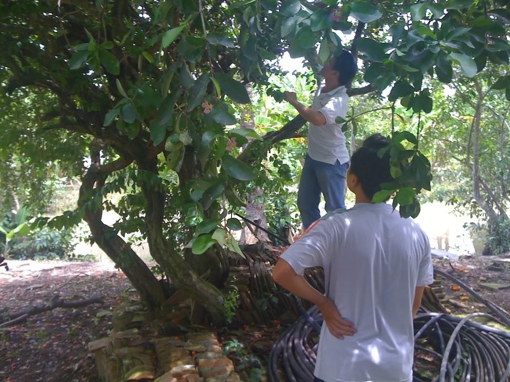 Một ngày xuống nhà Thái sư phụ 17/8/2011 IMG_0726