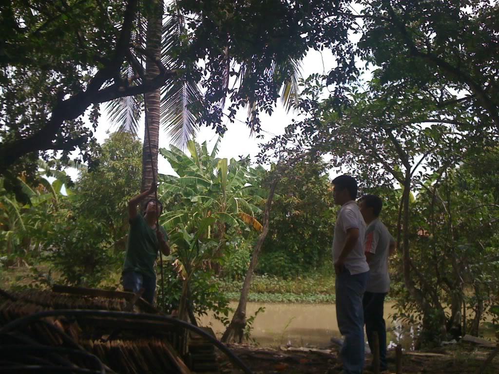 Một ngày xuống nhà Thái sư phụ 17/8/2011 IMG_0729