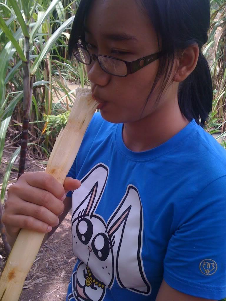 Một ngày xuống nhà Thái sư phụ 17/8/2011 IMG_0748