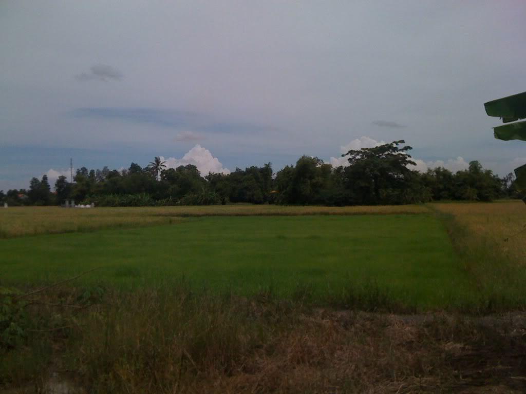 Một ngày xuống nhà Thái sư phụ 17/8/2011 IMG_0752