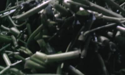 """Chiến dịch """"Máu nhuộm đường Văn Thân"""" diễn ra vào ngày 28/08/2011 Photo0193"""