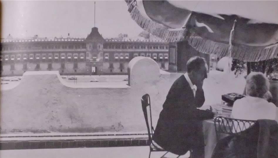 El Paseo de la Reforma y Chapultepec - Página 2 DSCI0253