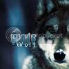 AOTW 15 Voting! Wolf