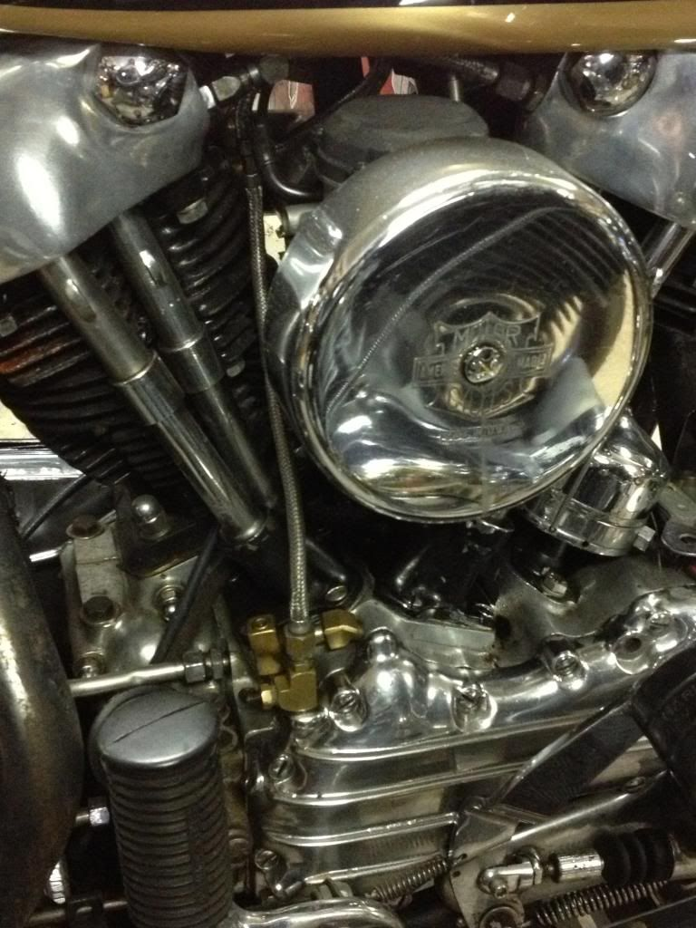 Here is that old pan/knuck bike I was talking about  IMG_0187_zps5afe74a6