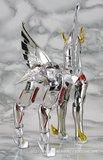 Pegasus Seya Th_4712103398_29a6f4f509_b