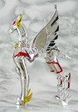 Pegasus Seya Th_4712103468_d5f183ce81_b