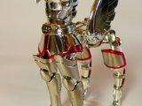 Pegasus Seya Th_P1160022