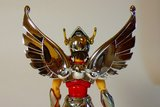 Pegasus Seya Th_P1160034