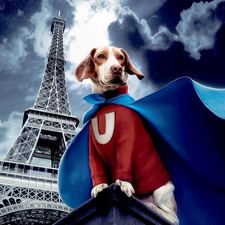 Superdog (Comedia) 97c01a8a
