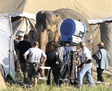 Water for Elephants : Photos  + Vidéos du tournage... - Page 10 Th_WFESet36
