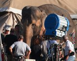 Water for Elephants : Photos  + Vidéos du tournage... - Page 10 Th_WFESet38