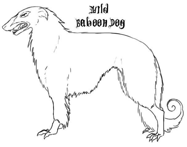 Wild Omnivores DarwildDog