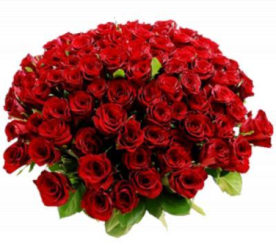 Поздравляем с Днем Рождения Ольгу (Амалия) 065e1620f4effed4686318007e752e28