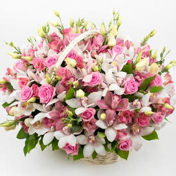 Поздравляем с Днем Рождения Ирину (АРИША) 803168cf3cdfc13272834162996be6b5