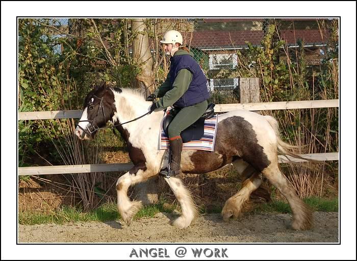 Angel au travail monté Dsc_0011-border