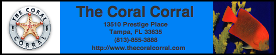 Sponsors of the Aquarist Club at USF for the 2012-2013 Academic Year! CoralCorralBanner2012-1