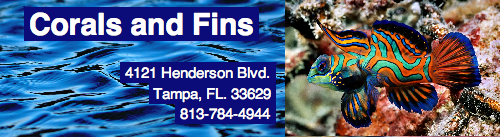 Sponsors of the Aquarist Club at USF for the 2011-2012 Academic Year SponsorLogo-CoralsandFins2