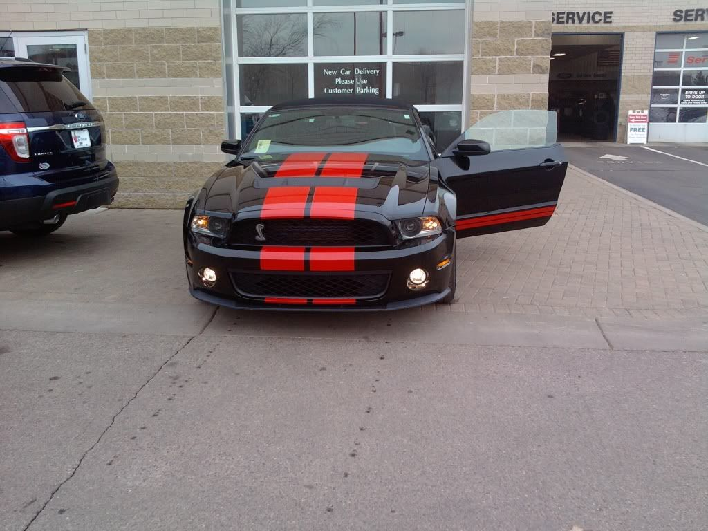 My next car! - Page 2 Shelby