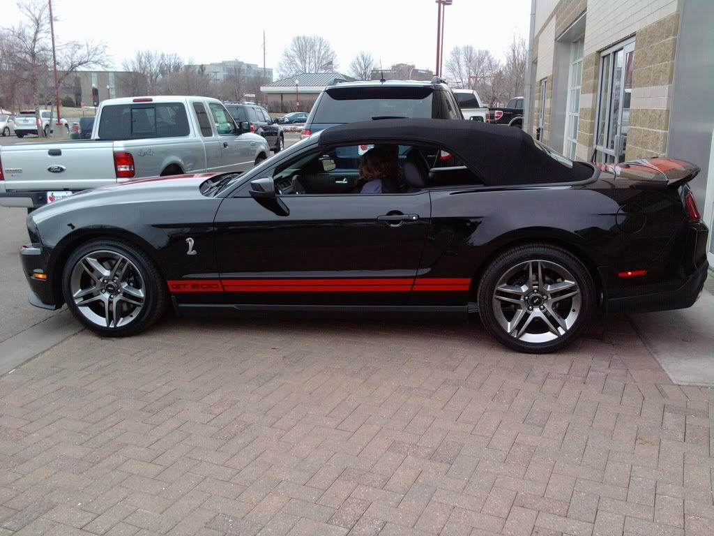 My next car! - Page 2 Shelby4