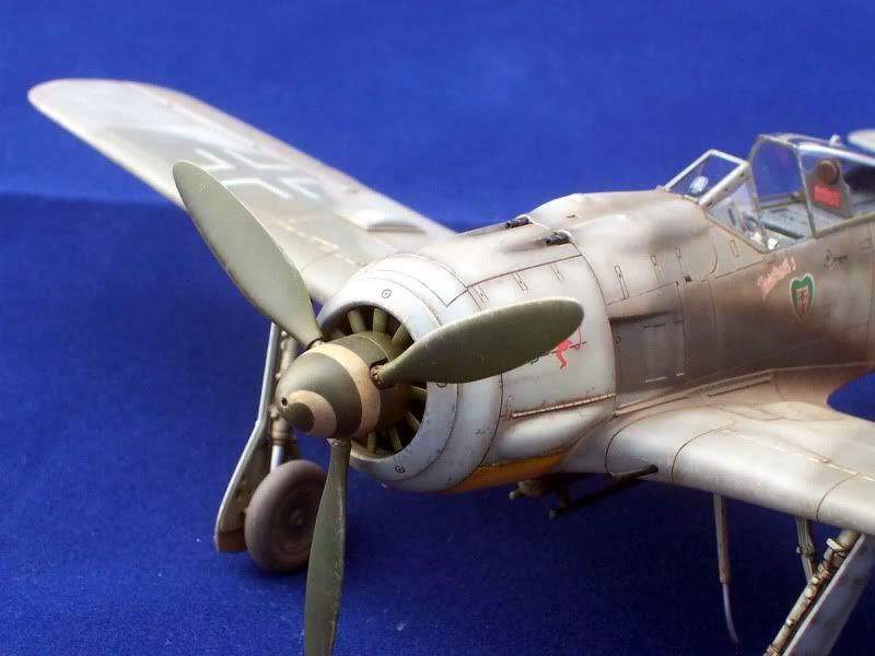 Focke-Wulf Fw 190  Gonzayvale016