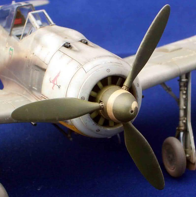 Focke-Wulf Fw 190  Gonzayvale018