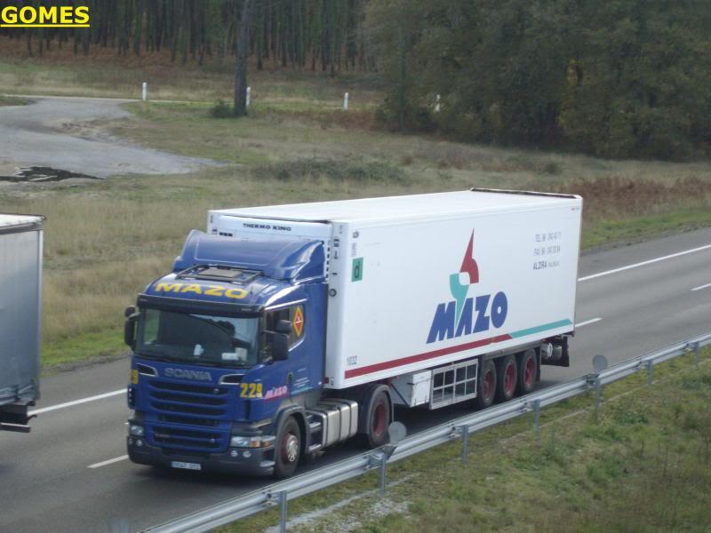 Mazo (Alzira - Valencia) Mazo