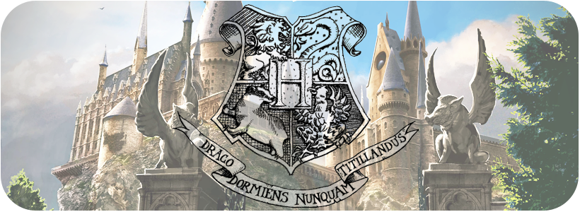 P.S.: We Love Hogwarts