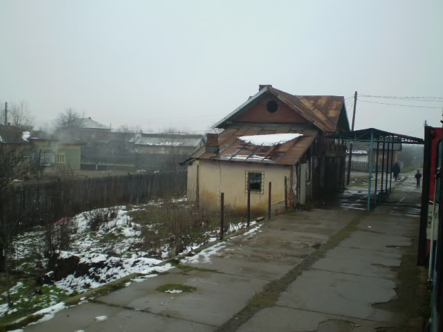 909 : Rosiori Nord - Alexandria - Zimnicea - Pagina 4 P1010007