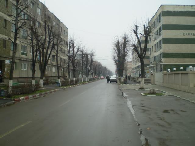 909 : Rosiori Nord - Alexandria - Zimnicea - Pagina 4 P1010015