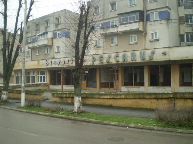 909 : Rosiori Nord - Alexandria - Zimnicea - Pagina 4 P1010019