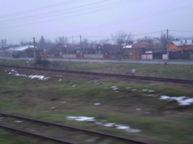 909 : Rosiori Nord - Alexandria - Zimnicea - Pagina 4 P1010029