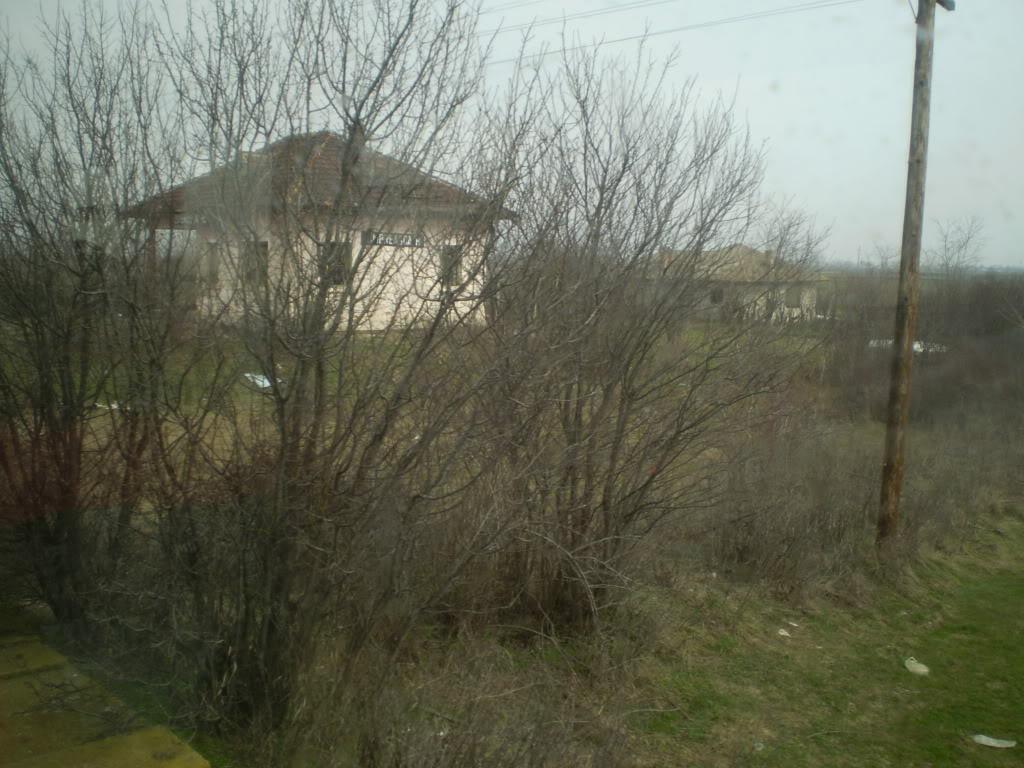 907 : Rosiori Nord - Costesti - Pagina 4 P1010032-1
