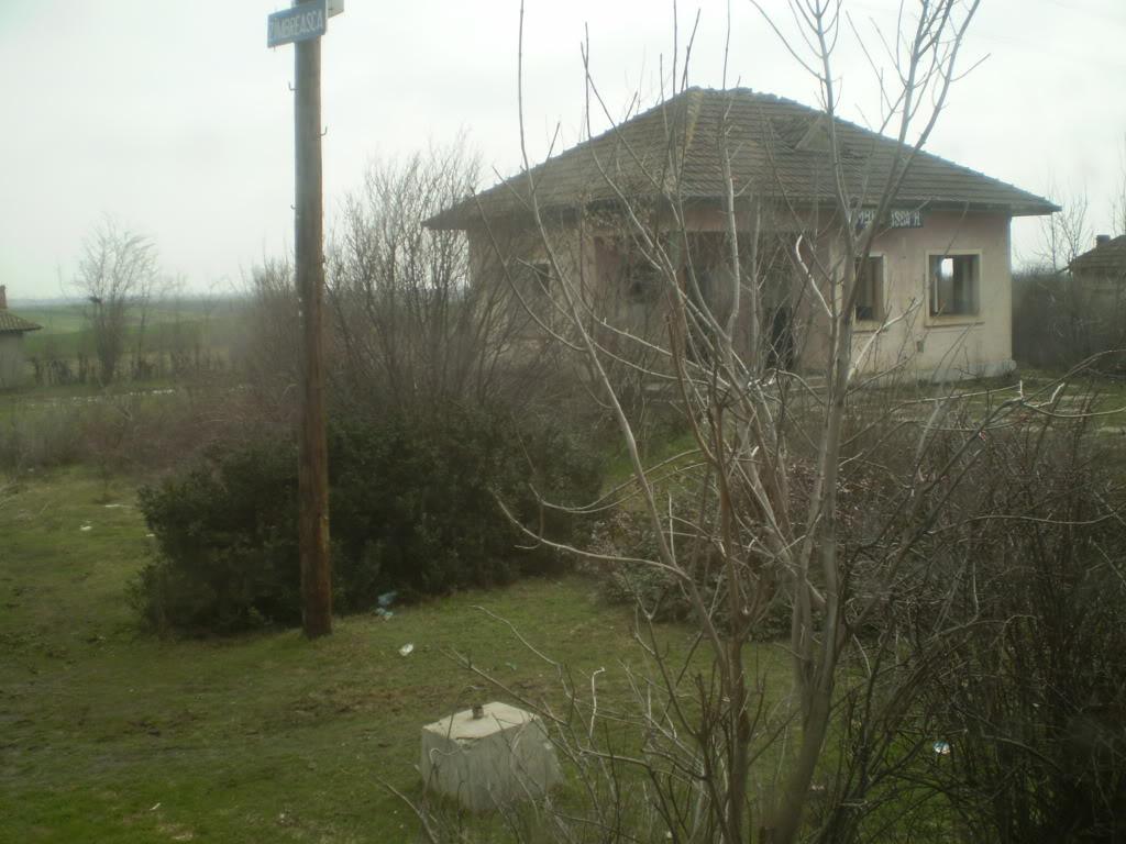 907 : Rosiori Nord - Costesti - Pagina 4 P1010033-1
