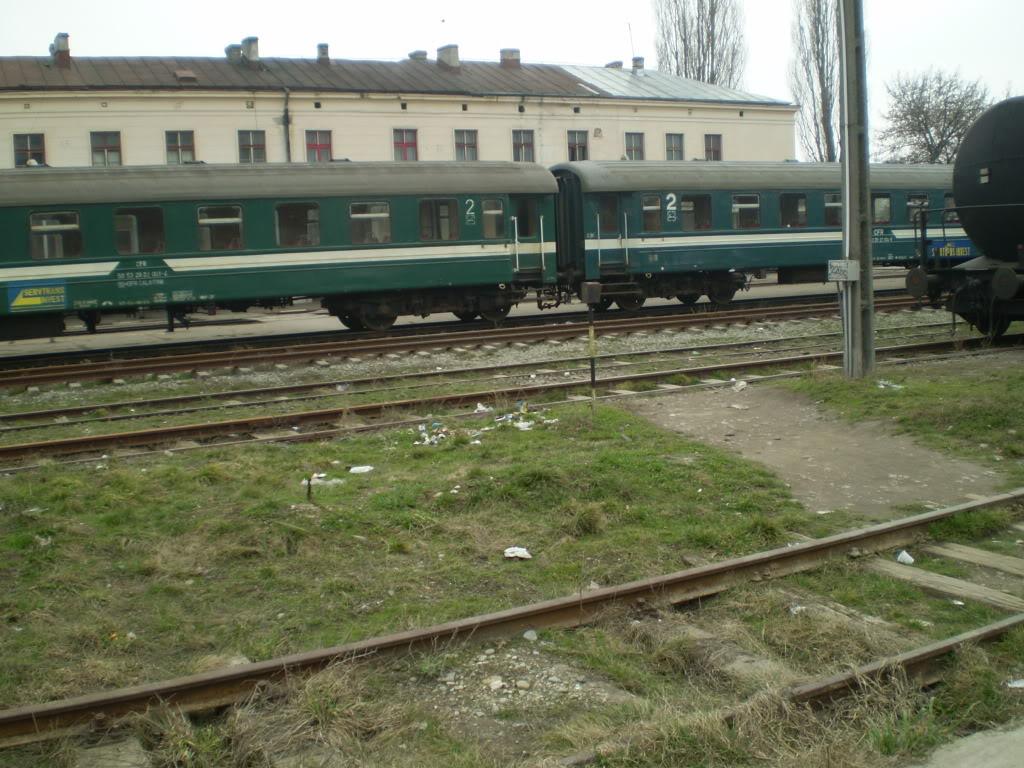 907 : Rosiori Nord - Costesti - Pagina 4 P1010042